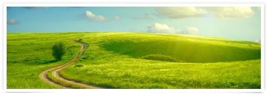 Áreas - Medio Ambiente | Gestión medioambiental